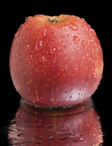 Free Wet Red Apple Stock Images - 13952414