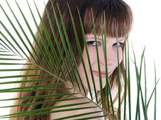 Free Woman Hiding Behind The Big Green Palm Leaf Stock Photos - 13953113