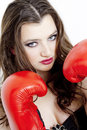 Free Woman With Boxing Gloves Stock Photos - 13968903