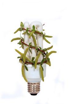 Free Energy Saving Lamp Stock Image - 13963601