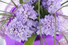 Free Bouquet Of Flowers Royalty Free Stock Image - 13964066