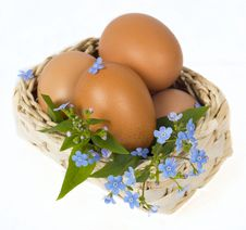 Free Eggs Stock Images - 13966674