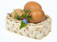 Free Eggs Royalty Free Stock Photos - 13966678