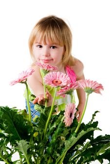 Cute Little Girl With The Wlowers Royalty Free Stock Images
