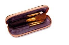 Free Cosmetics Brushes Stock Photography - 13967122