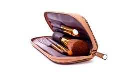 Makeup Brush Stock Images