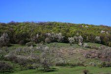 Free Landscape Royalty Free Stock Photos - 13967298