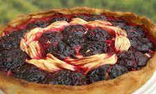 Free Fruit Tart Stock Photography - 13967332
