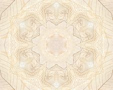 Free Beige Lace And Leaf Background Royalty Free Stock Photo - 13970015