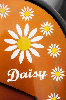 Free Daisy Stock Images - 13970464