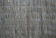 Brushwood Fence Stock Image