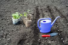Free Watering Can Stock Photos - 13972553