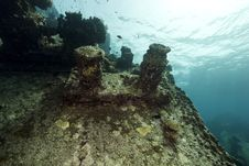 Free Wreck Freighter Kormoran - Sank In 1984 Tiran Stock Photos - 13973293