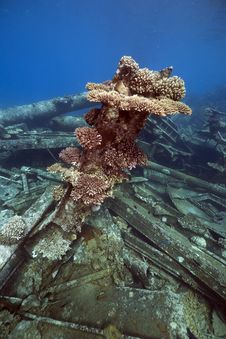 Free Wreck Freighter Kormoran - Sank In 1984 Tiran Stock Photos - 13973713