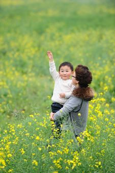 Free Mother And Son  In Flowers Stock Images - 13976014