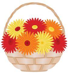 Free Gerber Daisies In Basket Royalty Free Stock Image - 13976356