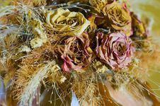 Free Dried Flowers Stock Images - 13976824