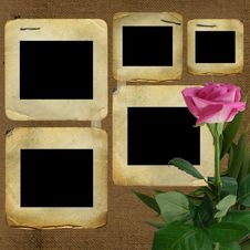 Free Old Slides For Photo With Pink Rose Stock Image - 13977201