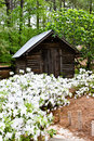 Free Old Wooden Shed Royalty Free Stock Images - 13985929