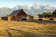 Free Barn And Grand Teton National Park Stock Image - 13981201