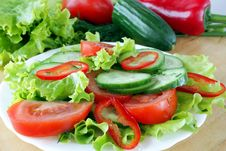 Free Vegetable Salad Royalty Free Stock Photography - 13986527