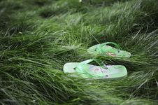 Free Flipflops In The Grass Stock Photos - 13988383