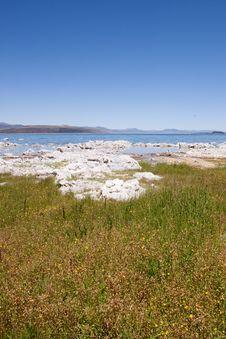 Free Mono Lake Stock Image - 13988421