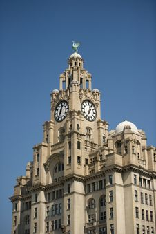 Free Liver Building Stock Photography - 13989482