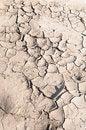 Free Dry Soil Stock Photos - 13999553