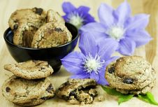 Free Cookies And Flowers Stock Images - 13991764