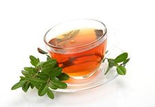 Free Cup With Tea Stock Image - 13998181