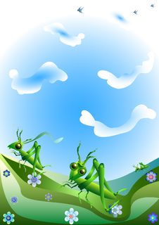 Free Grasshoppers Royalty Free Stock Images - 13998939
