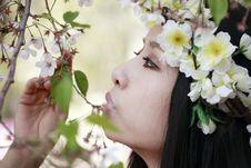 Free Cherry Blossom Girl Royalty Free Stock Photos - 13999678