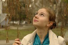 A Girl Under The Birch-tree Royalty Free Stock Photo