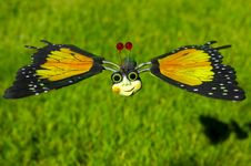 Free Toy Butterfly Royalty Free Stock Photography - 140907