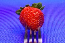 Free Strawberry On A Fork Royalty Free Stock Images - 143759