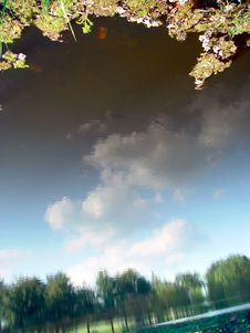 Free Clouds Reflected In The Pond Stock Image - 144911