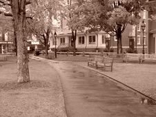 Free Rainy Day At The Park In Harvard Square Stock Photos - 144913