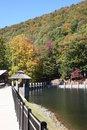 Free Lake Susan Walkway Stock Images - 1400794