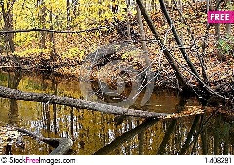 Autumn trees abstract Stock Photo