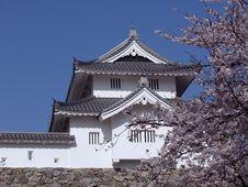 Japanese Castle In Spring-time Stock Image