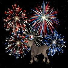 Free Political Donkey - Fireworks Royalty Free Stock Image - 1401696