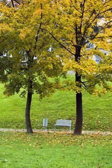 Free Autumn Park Royalty Free Stock Photos - 1402648