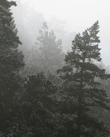 Free Mountain Fog Stock Photos - 1402983