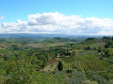 Free Tuscan Fields. Royalty Free Stock Photos - 1407048
