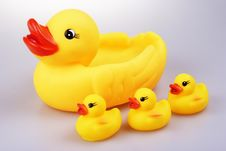Free Rubber Duck Stock Photo - 1408030