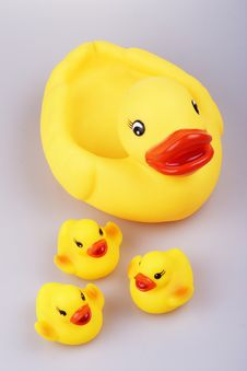 Free Rubber Duck Stock Photography - 1408042