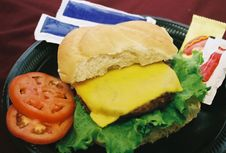 Free Cheese Burger Royalty Free Stock Images - 1408939