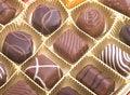 Free Chocolate Pralines Royalty Free Stock Photo - 14007155