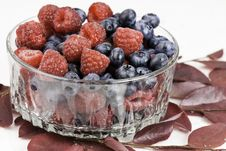 Free Berries In A Bowl Royalty Free Stock Image - 14001826